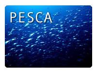 X Campeonato de España de Pesca desde embarcacion fondeada.